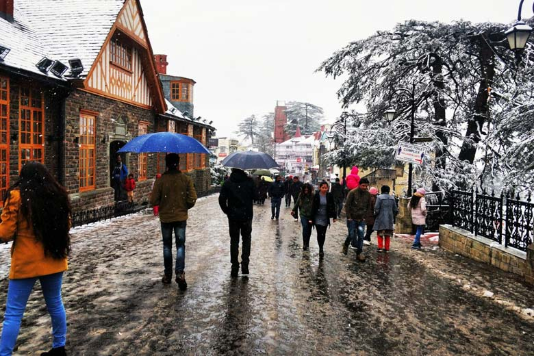 Things to Buy in Shimla